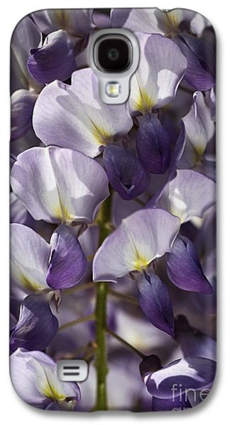 Botanical Galaxy S4 Cases - Wisteria In Spring Galaxy S4 Case by Joy Watson
