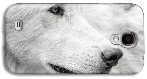 Puppies Galaxy S4 Cases - Wolf Close Up Galaxy S4 Case by Athena Mckinzie