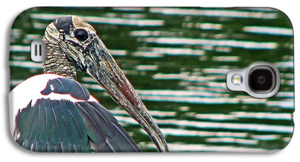Ancient Galaxy S4 Cases - Wood Stork Portrait Galaxy S4 Case by Sabrina Wheeler
