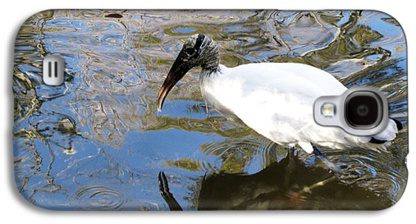 Beach Landscape Galaxy S4 Cases - Wood Stork With Reflection Galaxy S4 Case by Sharon Nelson-Bianco
