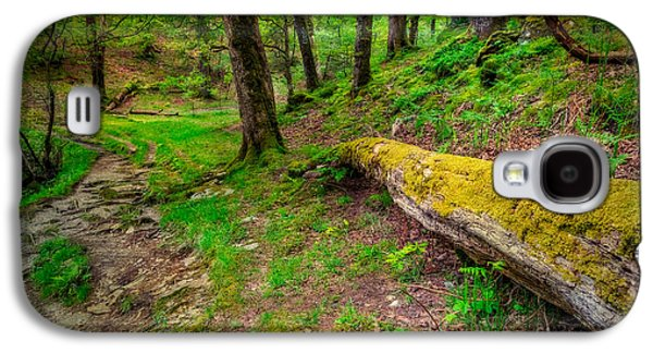 Woodland Galaxy S4 Case by Adrian Evans