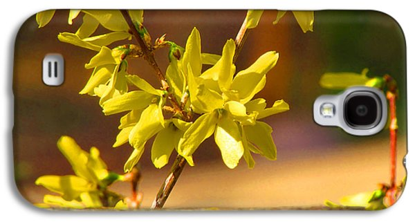 Original Art Photographs Galaxy S4 Cases - Y is for Yellow Galaxy S4 Case by Gardening Perfection