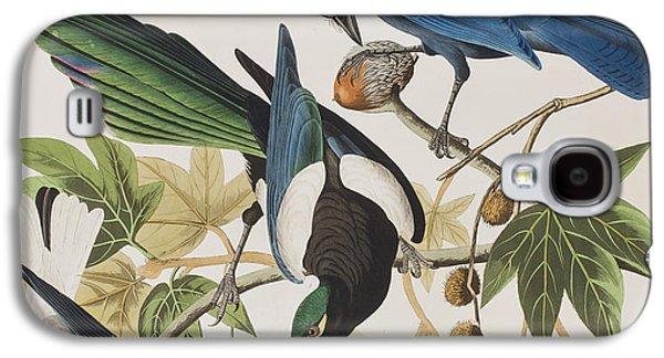 Yellow-billed Magpie Stellers Jay Ultramarine Jay Clark's Crow Galaxy S4 Case by John James Audubon