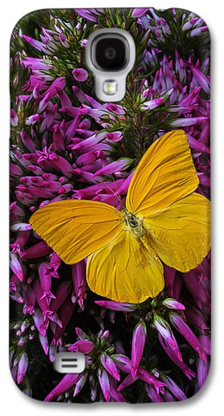 Italian Photographs Galaxy S4 Cases - Yellow Butterfly On Italian Ventricosa Galaxy S4 Case by Garry Gay