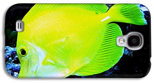 Original Photographs Galaxy S4 Cases - Yellow Fish Galaxy S4 Case by Colleen Kammerer
