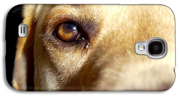 Freedmen Galaxy S4 Cases - Yellow Lab Eye Galaxy S4 Case by Jason Freedman
