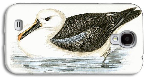 Yellow Nosed Albatross Galaxy S4 Case by English School