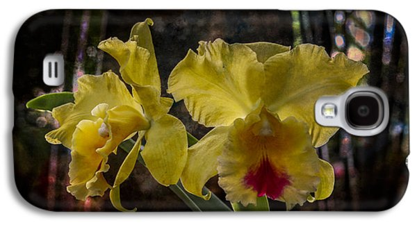 Colorful Abstract Galaxy S4 Cases - Yellow Orchids Galaxy S4 Case by Debra and Dave Vanderlaan