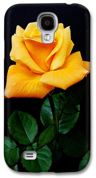 Close Up Floral Galaxy S4 Cases - Yellow Rose Galaxy S4 Case by Michael Peychich