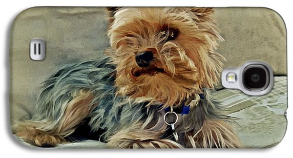Puppies Galaxy S4 Cases - Yorkie Love Galaxy S4 Case by Patricia Strand