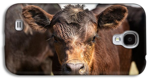 Young Angus Galaxy S4 Case by Todd Klassy