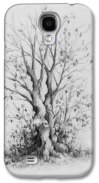 Tree Roots Galaxy S4 Cases - Young Tree Galaxy S4 Case by Rachel Christine Nowicki