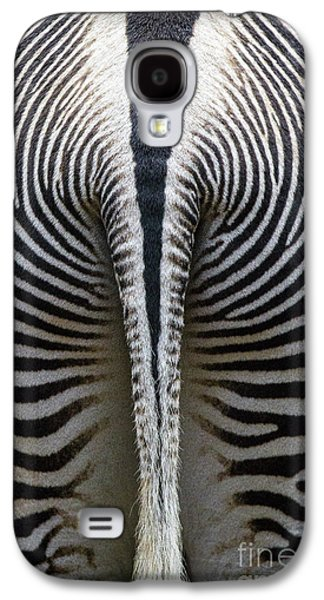 Nature Abstracts Galaxy S4 Cases - Zebra Stripes Galaxy S4 Case by Heiko Koehrer-Wagner