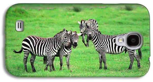 Wildlife Galaxy S4 Cases - Zebras Galaxy S4 Case by Sebastian Musial