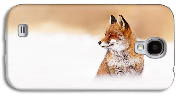 Zen Fox Series - Zen Fox In Winter Mood Galaxy S4 Case by Roeselien Raimond