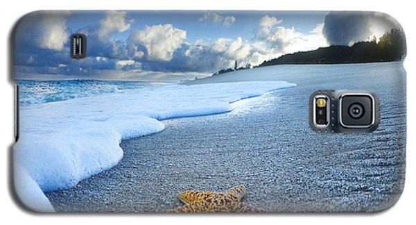 Seascape Galaxy S5 Cases - Blue Foam starfish Galaxy S5 Case by Sean Davey