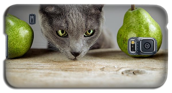 Cat And Pears Galaxy S5 Case by Nailia Schwarz