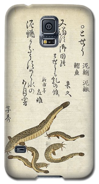 Catfish Galaxy S5 Case by British Library