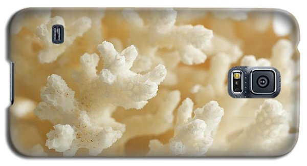 Cauliflower Coral Galaxy S5 Case by Science Photo Library