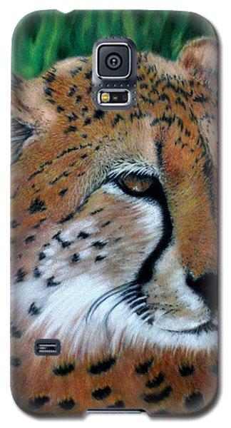 Cheetah Galaxy S5 Case by Carol McCarty
