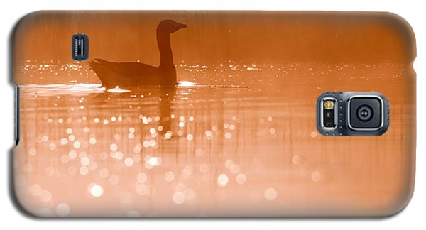 Early Morning Magic Galaxy S5 Case by Roeselien Raimond