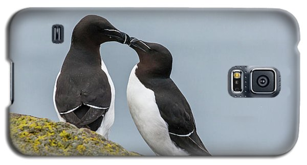 Europe, Iceland, Latrabjarg Galaxy S5 Case by Jaynes Gallery