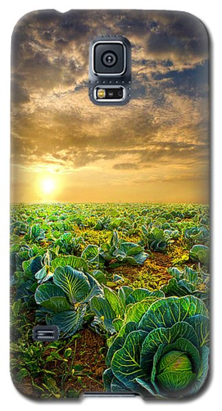 Fall Harvest Galaxy S5 Case by Phil Koch