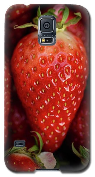 Gariguette Strawberries Galaxy S5 Case by Aberration Films Ltd
