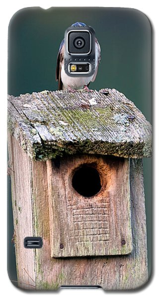 Home Sweet Home Galaxy S5 Case by Bill Wakeley