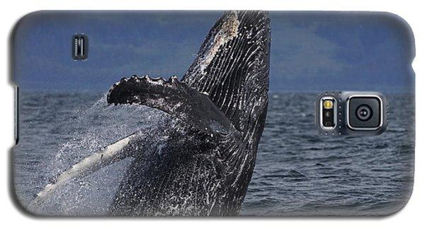 Humpback Whale Breaching Prince William Galaxy S5 Case by Hiroya Minakuchi