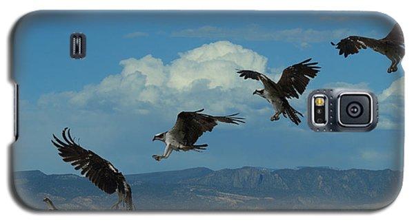 Landing Pattern Of The Osprey Galaxy S5 Case by Ernie Echols