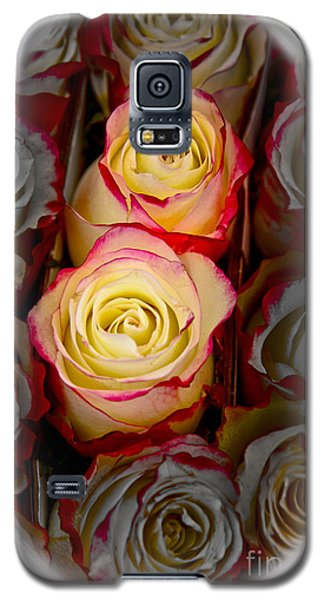 Love Is A Rose Galaxy S5 Case by Al Bourassa