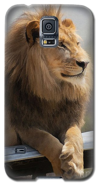 Majestic Lion Galaxy S5 Case by Sharon Foster