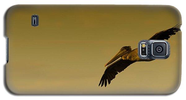 Animals Galaxy S5 Cases - Pelican Galaxy S5 Case by Sebastian Musial