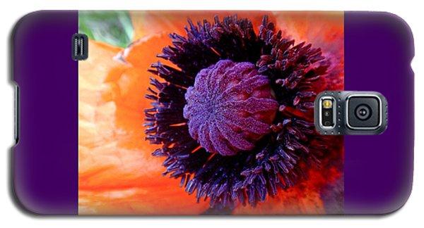 Flower Galaxy S5 Cases - Poppy Galaxy S5 Case by Rona Black