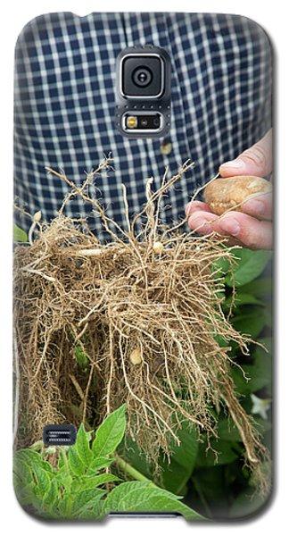 Potato Farming Galaxy S5 Case by Jim West