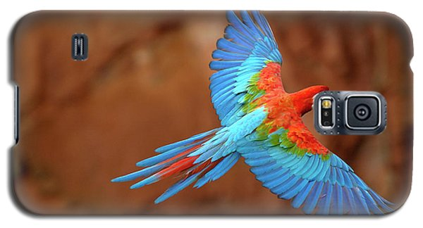 Red And Green Macaw Flying Galaxy S5 Case by Pete Oxford