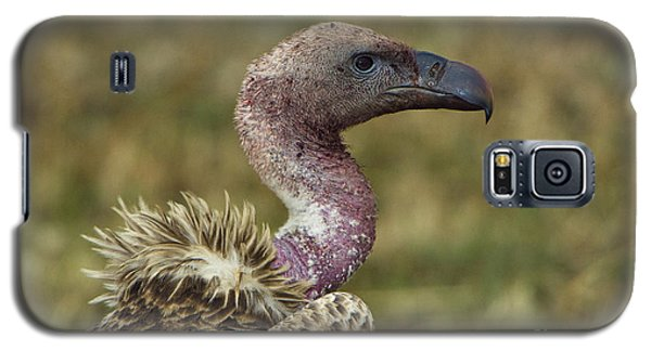 Ruppells Vulture Galaxy S5 Case by John Shaw