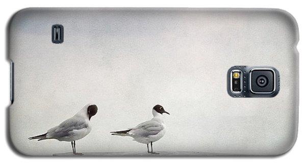 Bird Galaxy S5 Cases - Seagulls Galaxy S5 Case by Priska Wettstein