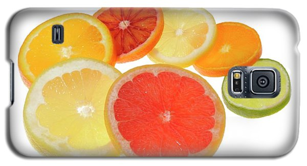 Slices Of Citrus Fruit Galaxy S5 Case by Cordelia Molloy