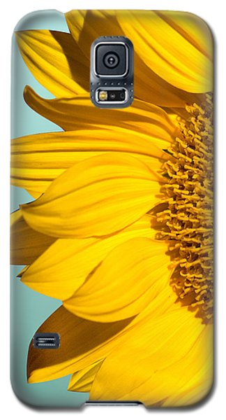 Sunflower Galaxy S5 Case by Mark Ashkenazi