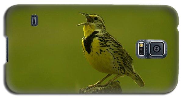 The Meadowlark Sings Galaxy S5 Case by Jeff Swan