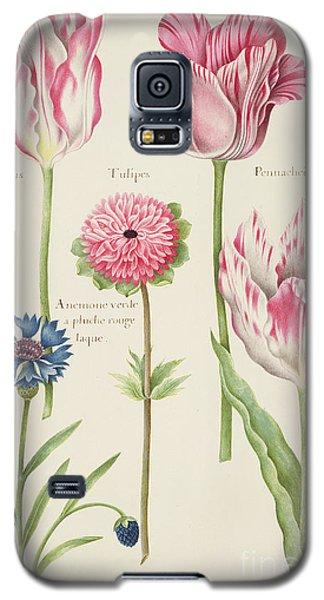 Tulips Galaxy S5 Case by Nicolas Robert