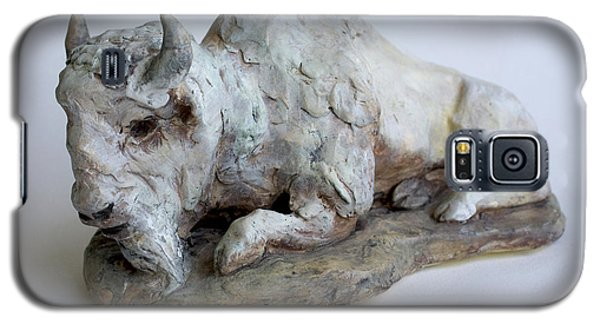 Ceramics Galaxy S5 Cases - White Buffalo-Sculpture Galaxy S5 Case by Derrick Higgins
