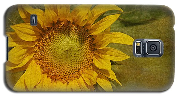 Sunflower Galaxy S5 Case by Cindi Ressler