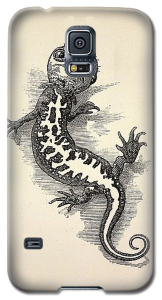 1863 Kingsley Waterbabies Human Newt Galaxy S5 Case by Paul D Stewart