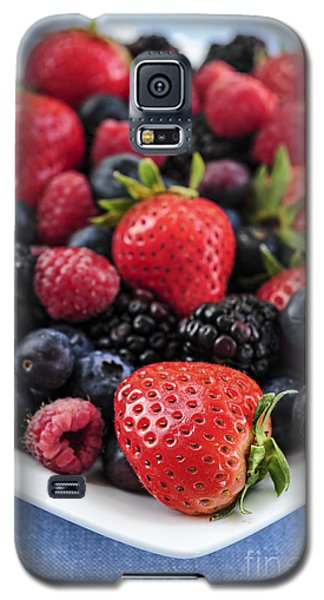 Assorted Fresh Berries Galaxy S5 Case by Elena Elisseeva