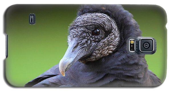 Black Vulture Portrait Galaxy S5 Case by Bruce J Robinson