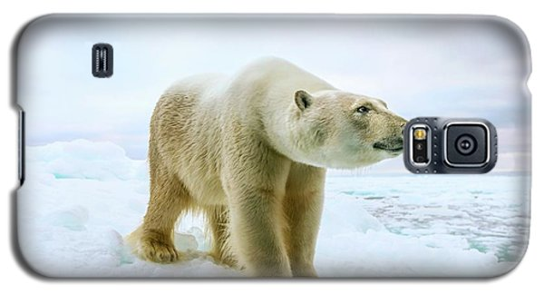 Close Up Of A Standing Polar Bear Galaxy S5 Case by Peter J. Raymond