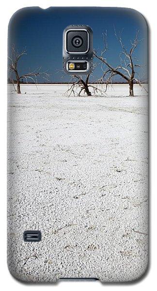 Dead Trees On Salt Flat Galaxy S5 Case by Jim West